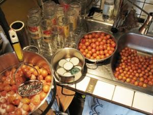 Kirschpflaumen vorbereiten