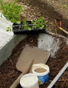 Kompostgabe und Düngung